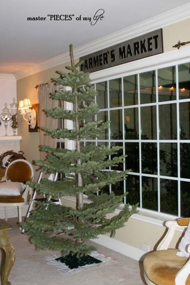 Christmas silver tip tree3