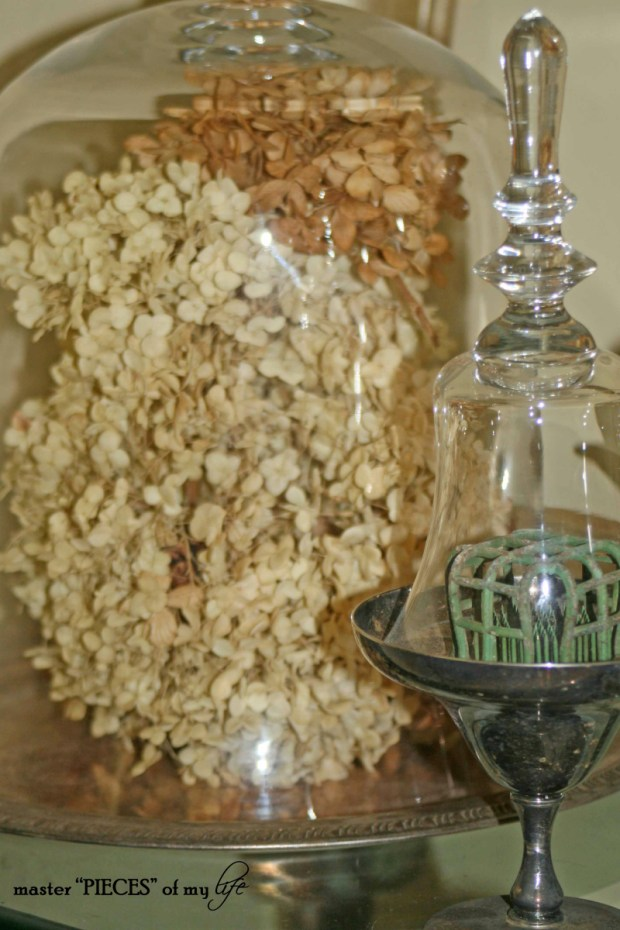 Cloches & dried flowers3