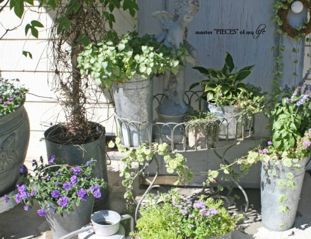 Gray container gardening5