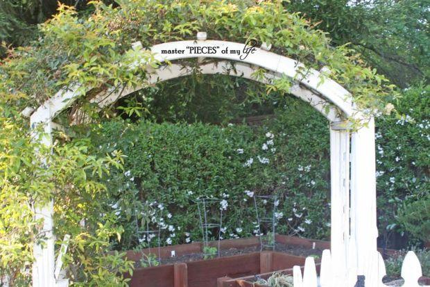 Veggie garden8