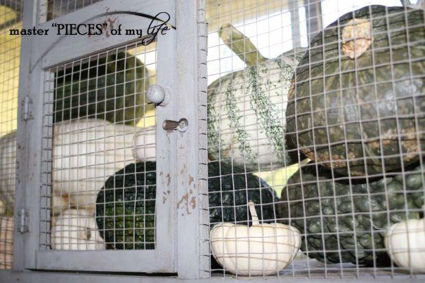 Pumpkin birdcage 10