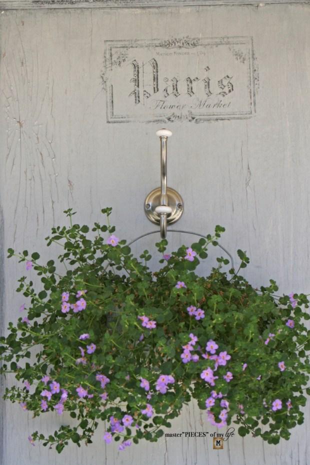 Container gardening ideas & inspo2
