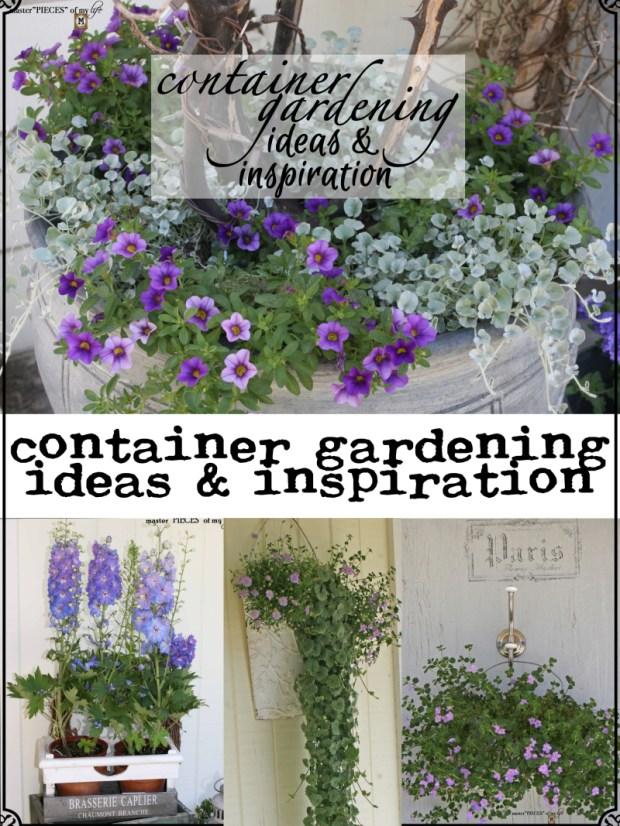 Pinterest container gardening ideas & inspo