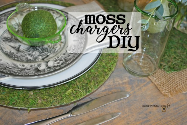 Moss chargers DIY 1