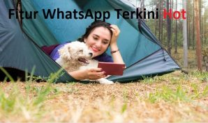 Fitur WhatsApp Terkini