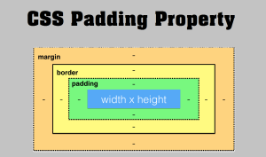 Padding Property In Hindi