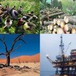La sobre explotación de los recursos naturales