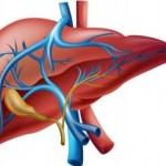 Remedios para depurar metales pesados del hígado