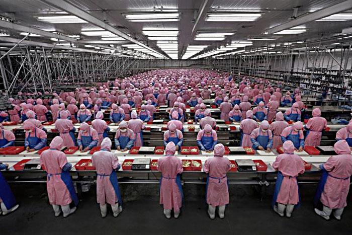 The laborer in Shanghai