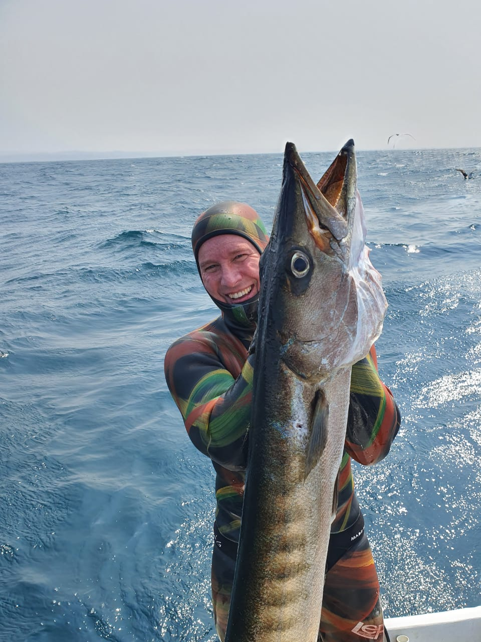 Master Gavin Nell with a giant Pickhandle Barracuda just over 19kg boat dive South