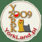 logo_ranking_d3