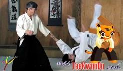 masTaekwondo_Aikido