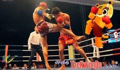 masTaekwondo_Muaythai