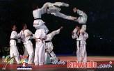 2010-09-30_(16822)x_masTaekwondo_Exhibicion-Galicia-Meilan_600_01