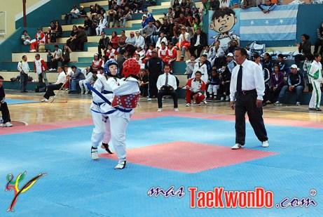 2010-10-07_masTaekwondo_Chimborazo-2010_Ecuador_600_10