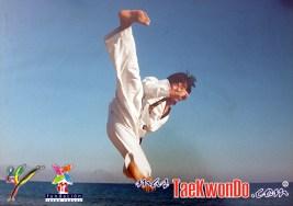 2010-10-16_(17640)x_masTaekwondo_Jeong-Cheol-Kim_02