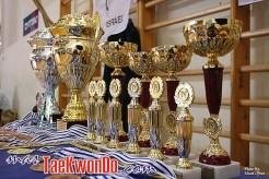 2010-10-27_(18119)x_masTaekwondo_Jerusalem-Open_01