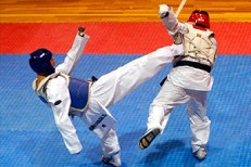 2010-11-30_masTaekwondo_Copa-Chile_300_10