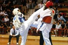 2010-11-30_masTaekwondo_Copa-Chile_640_03