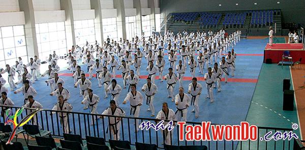 2010-01-17_(21227)x_masTaekwondo_Seminario-Kyu-Hyung-Lee_Chile_01