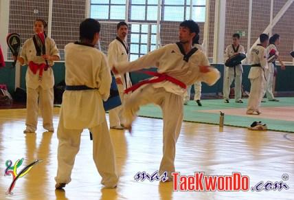2010-01-28_(21328)x_Campamento-Nacional-Taekwondo-Chile_04