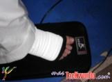 www.masTaekwondo.com