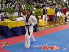 2011-02-09_(21617)x_II-Open-de-Venezuela_Poomsae