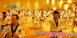 2011-02-16_(21882)x_masTaekwondo_Curso-IR-Poomsae_Austin_04