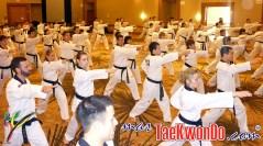 2011-02-16_(21882)x_masTaekwondo_Curso-IR-Poomsae_Austin_06
