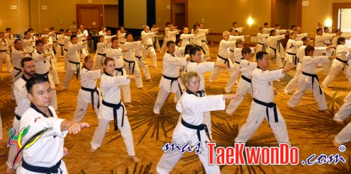 2011-02-16_(21882)x_masTaekwondo_Curso-IR-Poomsae_Austin_TAPA