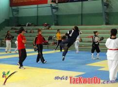2011-03-16_(22785)x_Taekwondo-Ecuador-Emtrenamiento_07