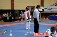 2011-07-09_(29994)x_Diogo-Silva-Baku-2011_Taekwondo_01