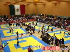 2011-11-07_(32929)x_Festival Mundial de Taekwondo_03
