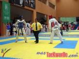 2011-11-07_(32929)x_Festival Mundial de Taekwondo_06