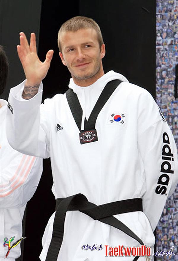 Resultado de imagen para david beckham taekwondo