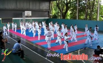 2011-12-19_(34750)x_capacitacion_Parana-BRA_08