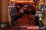 2012-02-20_US-Open_MG_8832