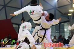 2013-06-15_LMT-Gran-Final_IMG_2250