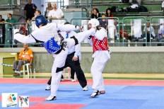 2013-08-06_(66844)x_19th-Maccabiah-Games_24-07-13_Taekwondo_02