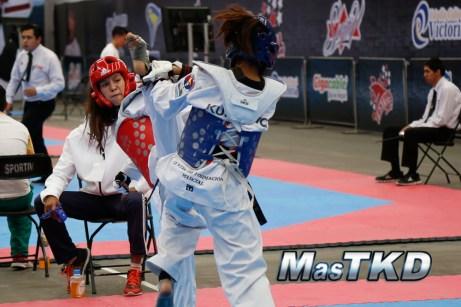 festival de cintas negras taekwondo-13