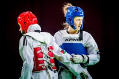 World-Taekwondo-GP-Moscow-2018_Day-1-Semi-Finals-and-Finals-15