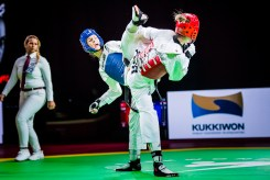World-Taekwondo-GP-Moscow-2018_Day-3-Evening-12