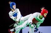 World-Taekwondo-GP-Moscow-2018_Day-3-Evening-15