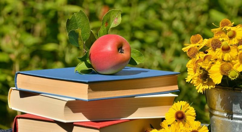 გაკვეთილზე ცოდნის აქტუალიზაციის მეთოდები