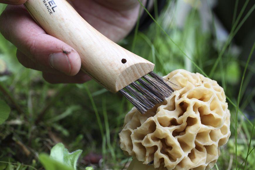 Opinel svampkniv (Opinel Mushroom Knife) är svampknivarnas svampkniv. Den har både känsla och funktion!