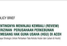 Pentingnya Review Izin Perusahaan HGU di Aceh