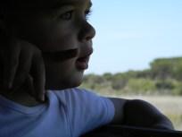 Doñana senderos accesibles
