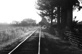 Sunset on Matangi Railway Track