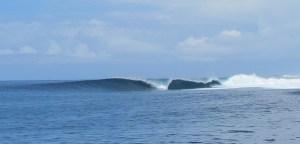 Surfing Kadavu