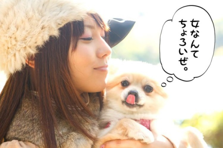 女を手玉に取る悪い犬